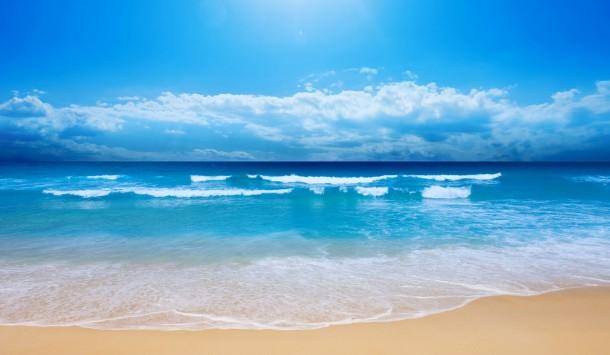 laut, 5 Cara Untuk Melakukan Penyelamatan Laut